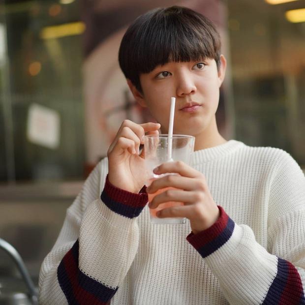 Liên hoàn phốt màn ảnh Hàn đầu 2020: Bê bối dàn sao Thế Giới Hôn Nhân chưa hết hồn bằng lùm xùm Kim Tae Hee trốn thuế - Ảnh 12.