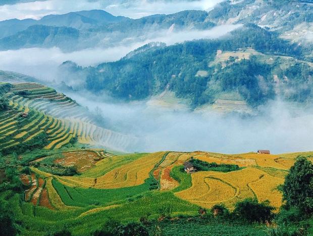 12 tháng đi hết Việt Nam: Bản đồ du lịch hoàn hảo dành cho những ai ngứa chân lắm rồi nhưng chưa biết đi đâu! - Ảnh 18.