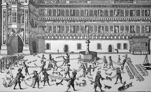 Những môn thể thao tàn ác nay đã tuyệt chủng: vặt cổ ngỗng, ném gà cho đến chết và thi Olympic bắn chim bồ câu - Ảnh 1.