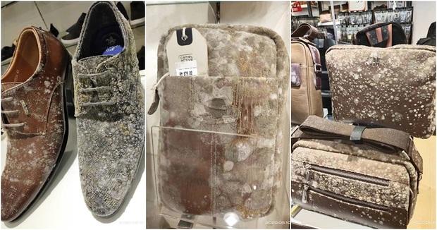 Sau 2 tháng phong tỏa, người dân Malaysia hoảng hồn phát hiện thìa gỗ trong cửa hàng đều phủ kín nấm mốc - Ảnh 2.
