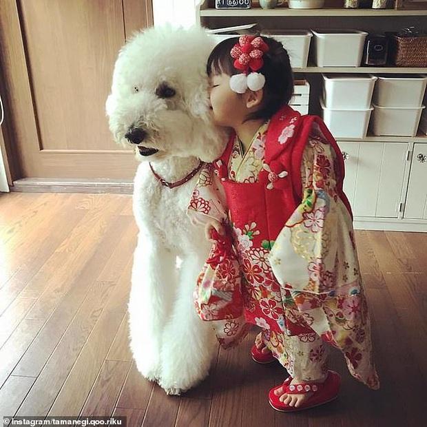 Chỉ ở nhà chăm sóc cháu và chơi với chó, bà ngoại vẫn thu hút hơn 560 nghìn người theo dõi trên MXH nhờ những hình ảnh quá sức dễ thương - Ảnh 5.
