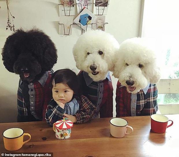 Chỉ ở nhà chăm sóc cháu và chơi với chó, bà ngoại vẫn thu hút hơn 560 nghìn người theo dõi trên MXH nhờ những hình ảnh quá sức dễ thương - Ảnh 8.