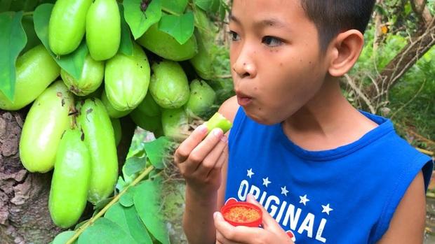 """Có tới 90% trong số chúng ta không biết tên loại quả """"chua vô địch"""" này, cô gái đăng ảnh chấm muối ăn sống mà ai nhìn cũng… ứa nước miếng - Ảnh 3."""