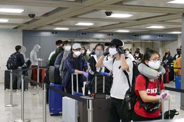Đưa hơn 340 người Việt từ Washington DC về Nội Bài - Ảnh 1.