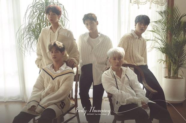 8 nhóm nhạc sắp đối diện lời nguyền 7 năm vào 2021: Người có hit nhưng vẫn chìm, kẻ không về lại nhóm sau khi vụt sáng ở Produce - Ảnh 5.