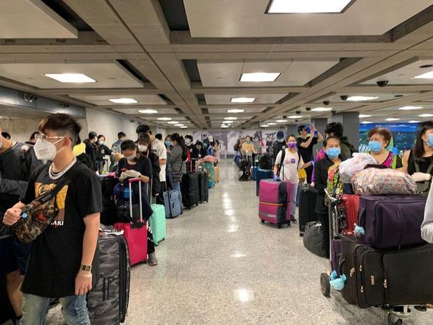 Đưa hơn 340 người Việt từ Washington DC về Nội Bài - Ảnh 4.