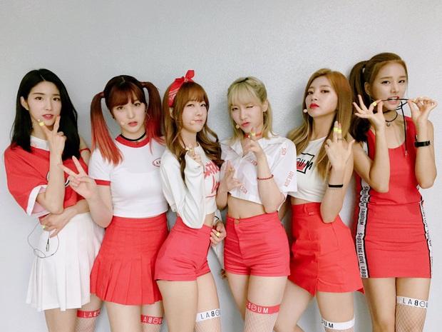 8 nhóm nhạc sắp đối diện lời nguyền 7 năm vào 2021: Người có hit nhưng vẫn chìm, kẻ không về lại nhóm sau khi vụt sáng ở Produce - Ảnh 8.