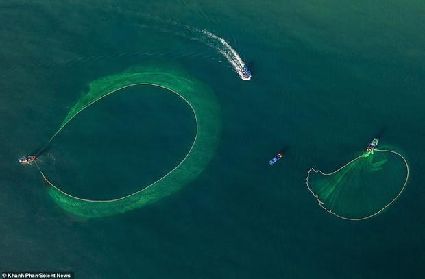 Cảnh người dân tung lưới đánh cá ở Phú Yên đầy mê hoặc được báo nước ngoài đăng tải và ca ngợi hết lời - Ảnh 5.