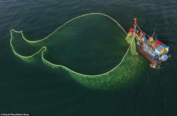 Cảnh người dân tung lưới đánh cá ở Phú Yên đầy mê hoặc được báo nước ngoài đăng tải và ca ngợi hết lời - Ảnh 6.