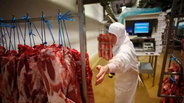 Pháp lo ngại các lò mổ gia súc có thể trở thành ổ dịch Covid-19 lớn - Ảnh 1.