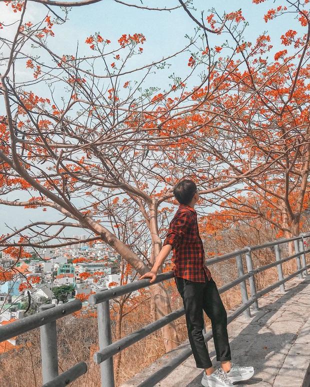 Đứng hình trước cảnh đường lên ngọn hải đăng Vũng Tàu vào ngày hôm qua: Đông đến ngộp thở, xe máy nhích từng chút một - Ảnh 10.