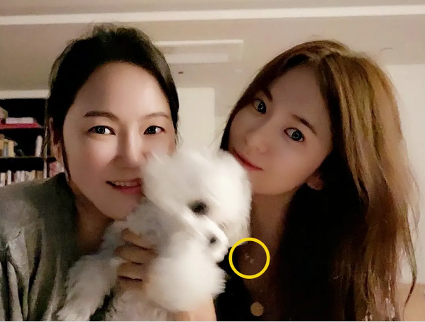 Vì sao Song Hye Kyo chia tay Hyun Bin: Cặp đôi vàng đường ai nấy đi không yên ấm, Jo In Sung bất ngờ bị réo tên - Ảnh 2.