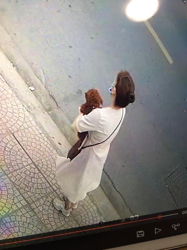 Chú chó Poodle chạy ra cổng rồi bị cô gái lạ mặt bế mất, chủ nhân khóc ròng nhờ cộng đồng mạng giúp tìm lại cún cưng - Ảnh 1.