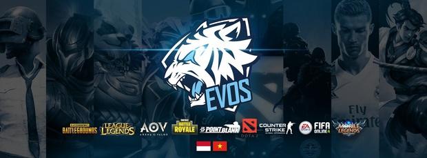 Nhiều tổ chức Esports nước ngoài đang xưng bá tại Việt Nam, Team Flash là anh cả - Ảnh 1.