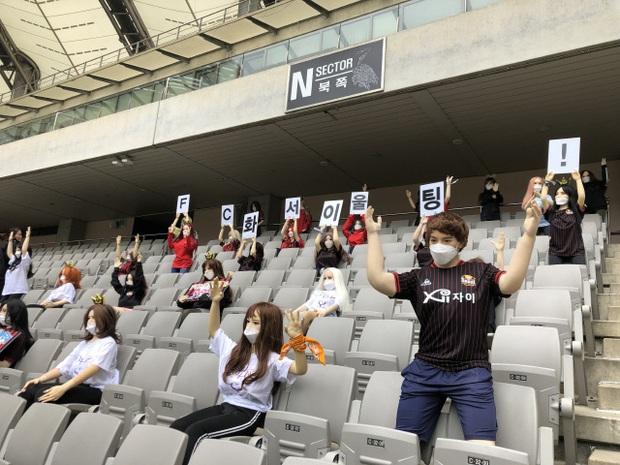 Đặt búp bê tình dục lên khán đài để thay khán giả, đội bóng Hàn Quốc bị phạt 1,9 tỷ đồng - Ảnh 3.