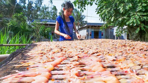 Việt Nam có hẳn món vũ nữ chân dài: tên lạ hoắc, tuy ít người biết nhưng là đặc sản của cả một vùng - Ảnh 3.