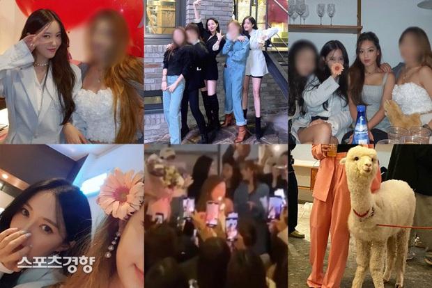 """Nam idol """"không đánh tự khai"""" về vụ scandal loạt minh tinh quẩy tiệc xa hoa giữa mùa dịch, ai ngờ bị """"ném đá"""" nặng nề - Ảnh 2."""