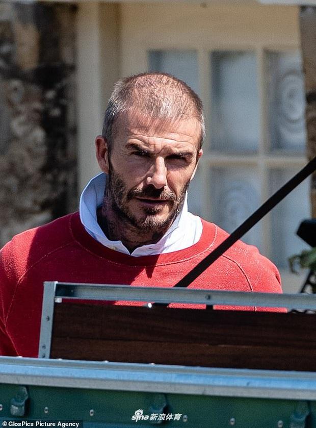 Victoria mừng húm vì ông xã David Beckham hói đầu, xuống sắc: Nguyên nhân đằng sau điều này hoàn toàn dễ hiểu - Ảnh 1.