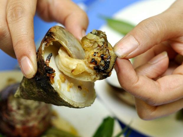 Những món hải sản ở Việt Nam tưởng quen thuộc lại được sách kỷ lục vinh danh, có loại mới nhìn thôi đã thấy rùng mình không dám ăn - Ảnh 10.