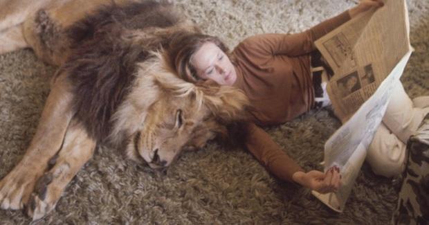 Bức ảnh con sư tử tấn công cô gái trẻ ngỡ là khoảnh khắc kinh hoàng cuối cùng của nạn nhân nhưng sự thật trái ngược hoàn toàn - Ảnh 3.
