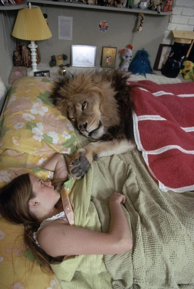 Bức ảnh con sư tử tấn công cô gái trẻ ngỡ là khoảnh khắc kinh hoàng cuối cùng của nạn nhân nhưng sự thật trái ngược hoàn toàn - Ảnh 5.
