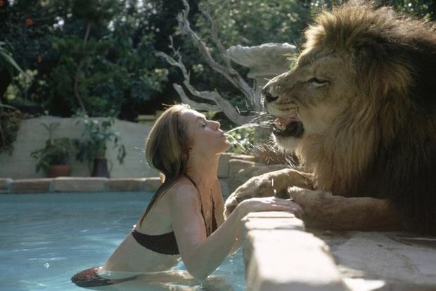 Bức ảnh con sư tử tấn công cô gái trẻ ngỡ là khoảnh khắc kinh hoàng cuối cùng của nạn nhân nhưng sự thật trái ngược hoàn toàn - Ảnh 6.