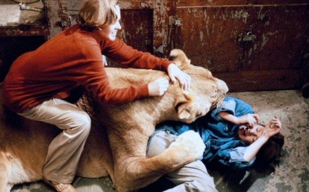 Bức ảnh con sư tử tấn công cô gái trẻ ngỡ là khoảnh khắc kinh hoàng cuối cùng của nạn nhân nhưng sự thật trái ngược hoàn toàn - Ảnh 7.
