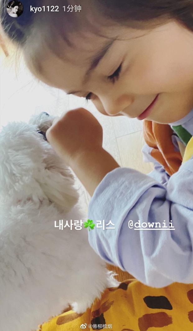 Giữa lùm xùm tái hợp với Hyun Bin, Song Hye Kyo chính thức khẳng định tình yêu của mình cho 1 nhân vật đặc biệt - Ảnh 2.