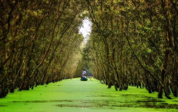 Khám phá lịch trình du lịch Việt Nam từ giờ đến cuối năm, các chị em hãy đi ngay để biết nước mình đẹp thế nào! - Ảnh 20.