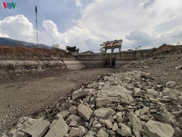 Khoảng 72.000 người dân Ninh Thuận có nguy cơ thiếu đói do hạn hán - Ảnh 2.