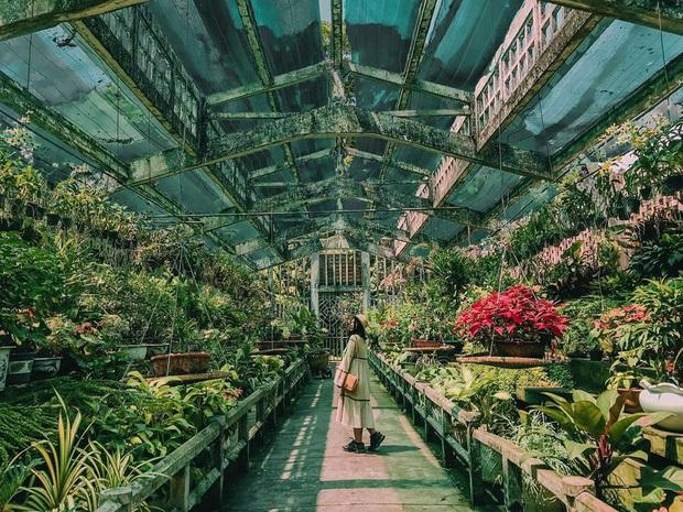 """Thảo Cầm Viên – địa điểm đang dần bị lãng quên bởi giới trẻ Sài Gòn hiện đại: Nếu không """"giải cứu"""" kịp thời, có lẽ nơi này sẽ mãi là ký ức! - Ảnh 13."""