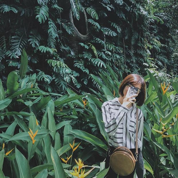 """Thảo Cầm Viên – địa điểm đang dần bị lãng quên bởi giới trẻ Sài Gòn hiện đại: Nếu không """"giải cứu"""" kịp thời, có lẽ nơi này sẽ mãi là ký ức! - Ảnh 12."""
