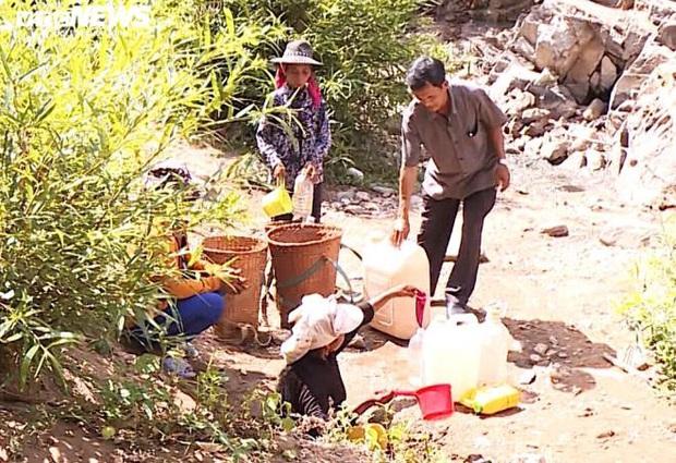 Hạn kinh hoàng, người Gia Lai mót từng giọt nước đục ngầu từ hố trũng về ăn - Ảnh 3.
