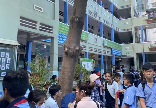 Vụ cây phượng đổ đè trúng 18 học sinh: Bé trai bị đa chấn thương nặng phải trải qua ca phẫu thuật 5 tiếng - Ảnh 1.