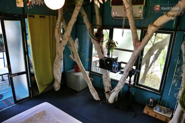 Ngay Hà Nội có một căn nhà cheo leo trên đỉnh ngọn cây của người họa sĩ 61 tuổi: Gần 20 năm trồng và đợi cây lớn - Ảnh 7.