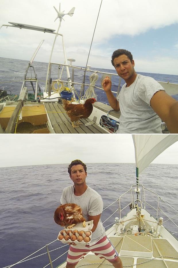 Gã trai ôm gà mái đi du lịch vòng quanh thế giới bằng đường biển - Ảnh 2.