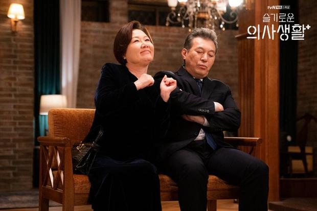 Đầy nhân văn và chân thật, Hospital Playlist chính là phim y khoa hay nhất xứ Hàn lúc này! - Ảnh 10.