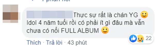 """Hoãn comeback đã đành, lại có tin đồn BLACKPINK tiếp tục ra… mini album khiến fan phẫn nộ: """"Có idol nào gần 4 năm mà vẫn chưa có full album không?"""" - Ảnh 5."""