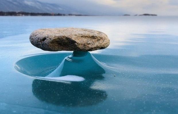 Loạt ảnh chứng minh sức sáng tạo vô hạn của thiên nhiên nhưng phải tinh ý thì con người mới phát hiện ra - Ảnh 10.