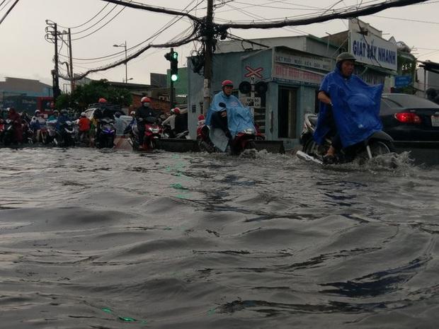 Cây đổ, đường phố Sài Gòn mênh mông nước sau trận mưa cực lớn - Ảnh 1.