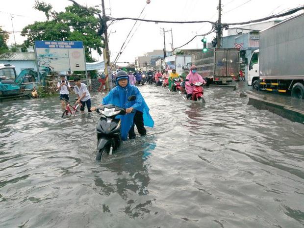 Cây đổ, đường phố Sài Gòn mênh mông nước sau trận mưa cực lớn - Ảnh 2.