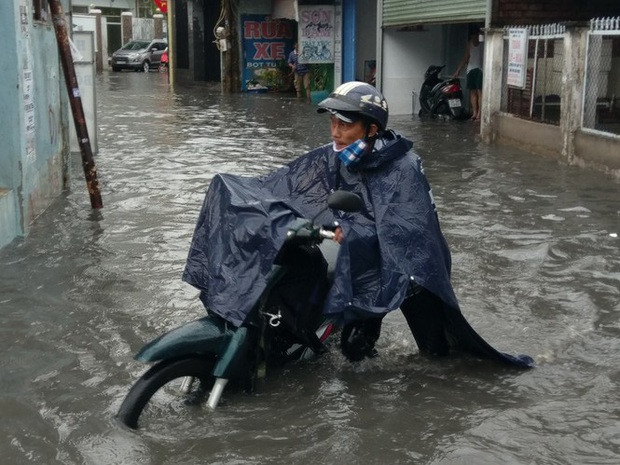 Cây đổ, đường phố Sài Gòn mênh mông nước sau trận mưa cực lớn - Ảnh 4.