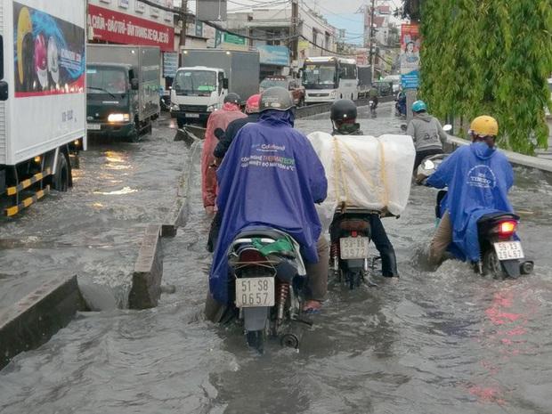 Cây đổ, đường phố Sài Gòn mênh mông nước sau trận mưa cực lớn - Ảnh 5.