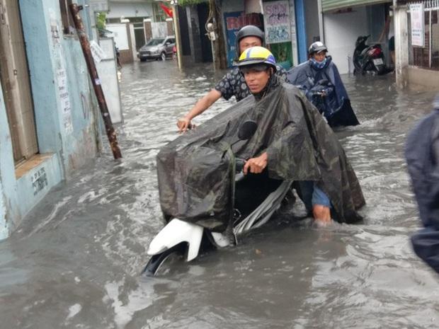 Cây đổ, đường phố Sài Gòn mênh mông nước sau trận mưa cực lớn - Ảnh 6.