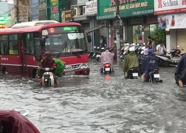 Cây đổ, đường phố Sài Gòn mênh mông nước sau trận mưa cực lớn - Ảnh 7.