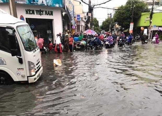 Cây đổ, đường phố Sài Gòn mênh mông nước sau trận mưa cực lớn - Ảnh 8.