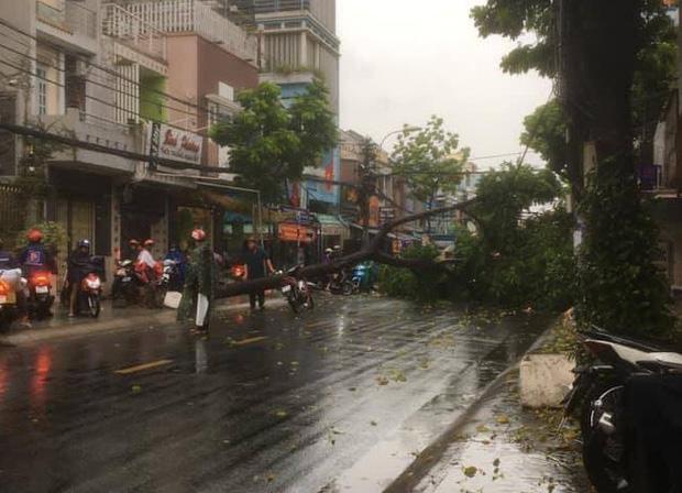 Cây đổ, đường phố Sài Gòn mênh mông nước sau trận mưa cực lớn - Ảnh 9.