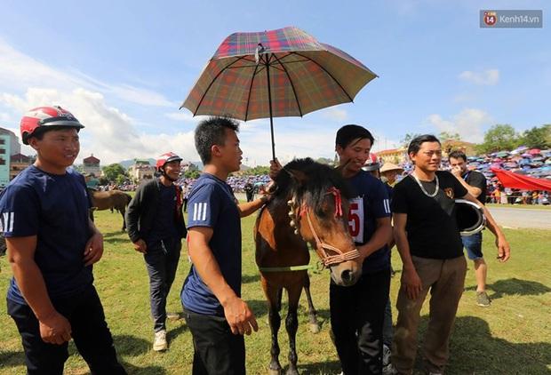 Lần đầu tiên có nài ngựa nữ tham gia đua ngựa Bắc Hà - Ảnh 9.