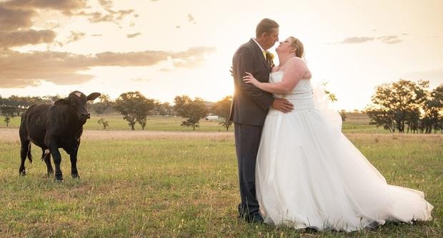 Đang chụp ảnh cưới bỗng có trẻ trâu không mời nhảy vào phá đám, chú rể phải ra tay dọa kẻ phá hoại bỏ chạy tóe khói - Ảnh 2.