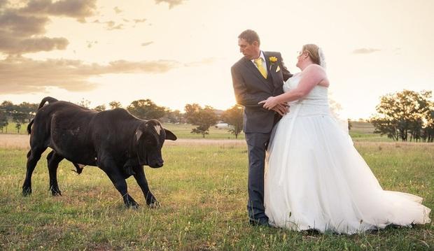 Đang chụp ảnh cưới bỗng có trẻ trâu không mời nhảy vào phá đám, chú rể phải ra tay dọa kẻ phá hoại bỏ chạy tóe khói - Ảnh 5.